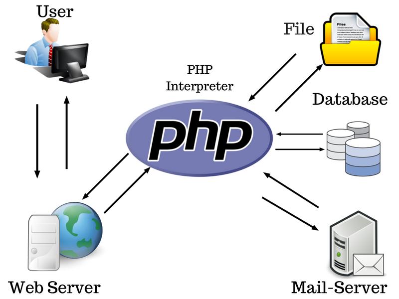 مقایسه اسکریپتهای سمت کاربر با سمت سرور در زبان PHP | پرگاس