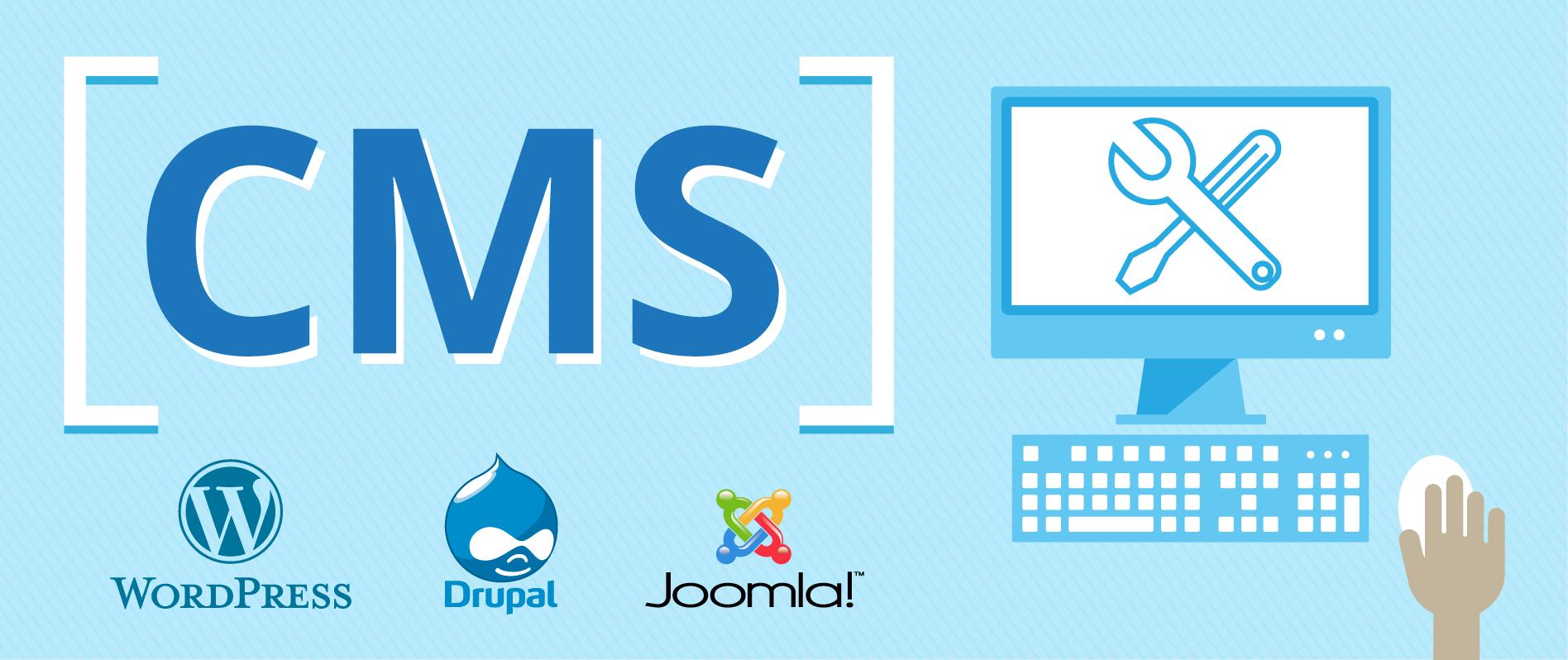 پرگاس: مزایا و معایب طراحی سایت با CMS اختصاصی