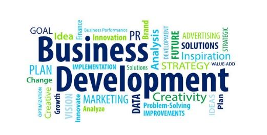 طرحهایی برای توسعه کسب و کار | پرگاس
