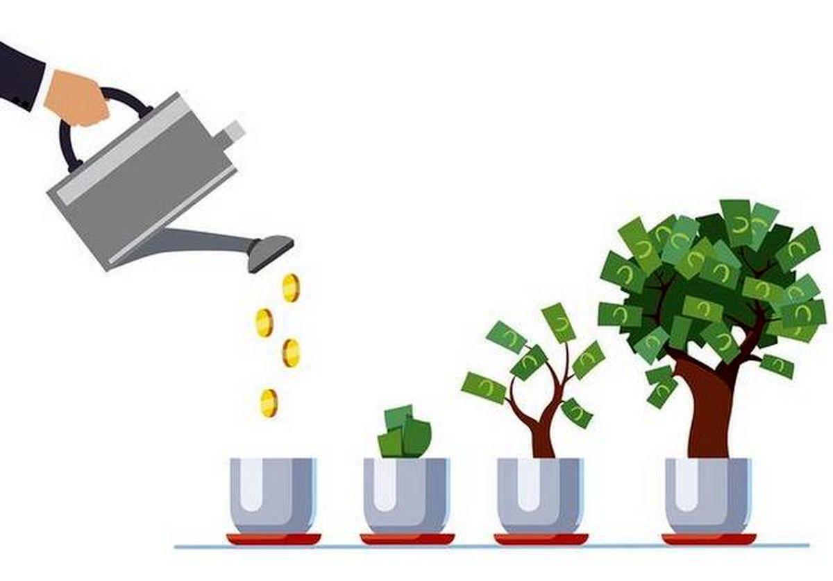 کسب درآمد در منزل با پرورش گیاهان | پرگاس